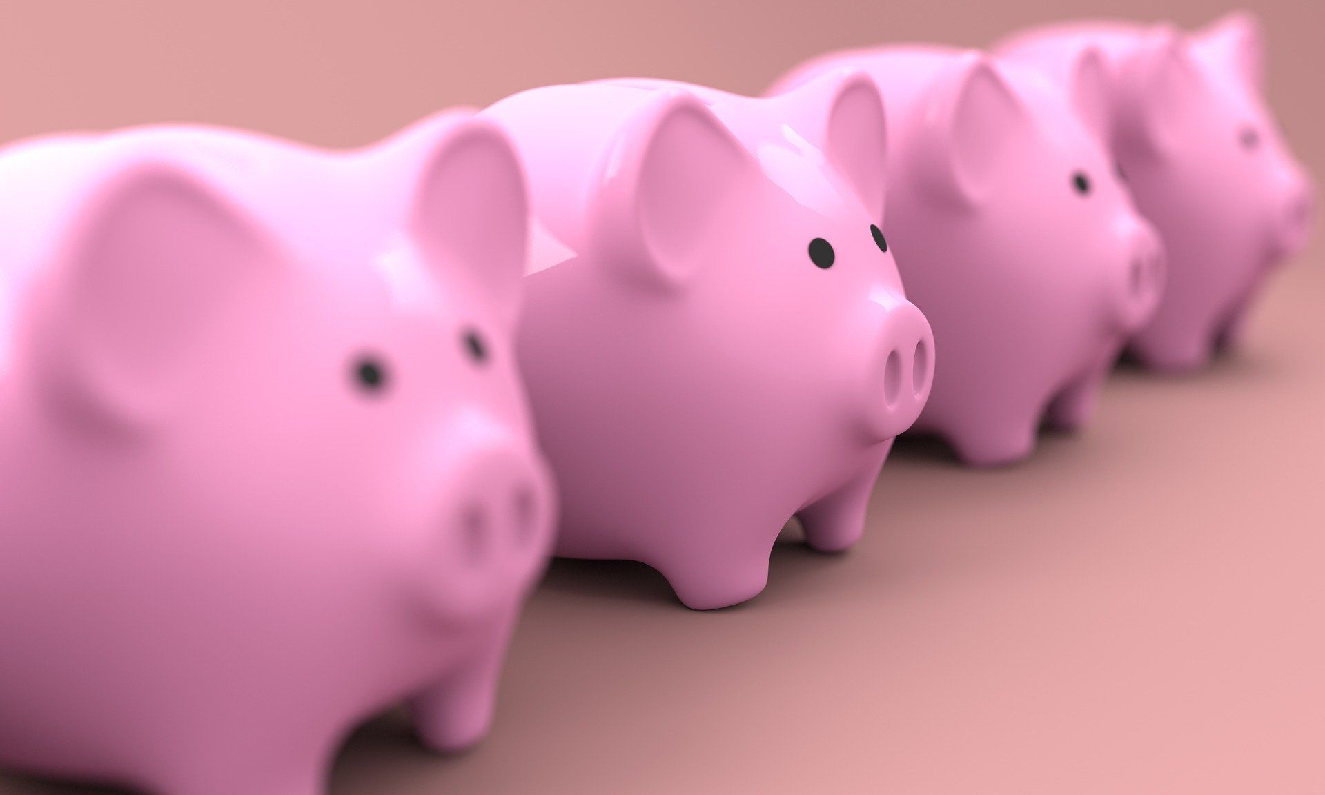 four pink piggy banks stood in a row